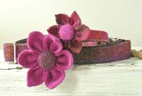 Cerise Harris Tweed Flower corsage for dog collar